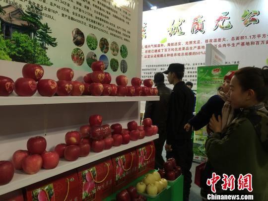 12月31日,第二届中国西部(兰州)休闲博览会暨甘肃首届农产品交易会在甘肃国际会展中心开幕。 崔琳 摄