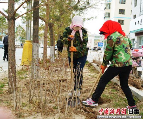 酒泉肃北县2017年园林绿化工程全面开工(图)