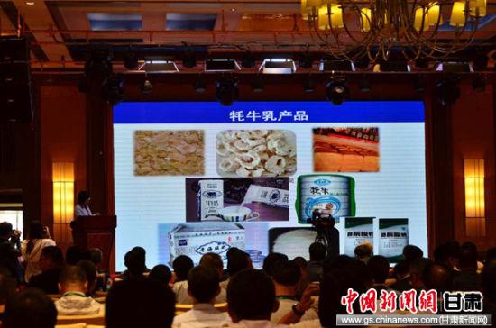 7月13日,2017年中国牦牛乳产业发展论坛在甘肃甘南藏族自治州合作市举办。崔琳 摄