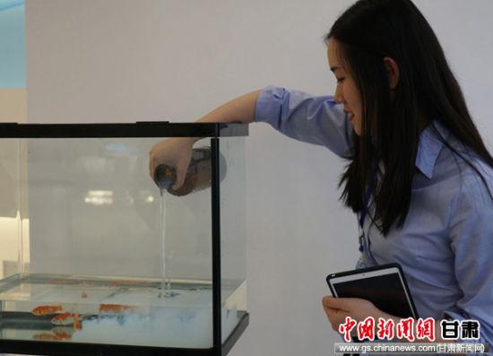 图为水性科天无毒实验――涂料里面养金鱼。