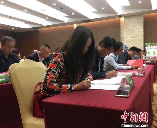 9月9日,2017年甘肃农业博览会平凉特色农产品专场推介签约会在兰州举行。 崔琳 摄