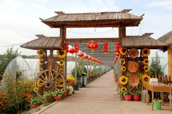 图为山丹县祁店村四季采摘园。