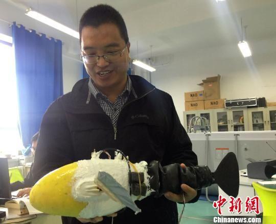 图为兰州交通大学机器人创新创业基地负责人李宗刚展示机器鱼。 徐雪 摄