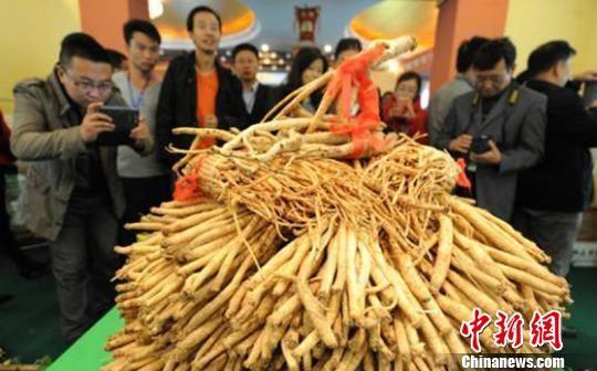 资料图:图为甘肃举办中药材产业大会。 杨艳敏 摄
