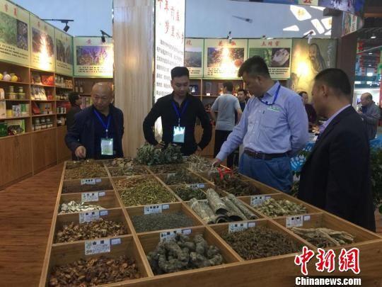资料图:甘肃中医药科业博览会上客商在考察甘肃地产中药材。 刘玉桃 摄