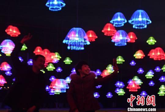 水母灯展让人仿佛置身于梦幻世界中。 杨艳敏 摄