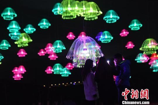 夜色中的水母灯光秀格外迷人。 杨艳敏 摄