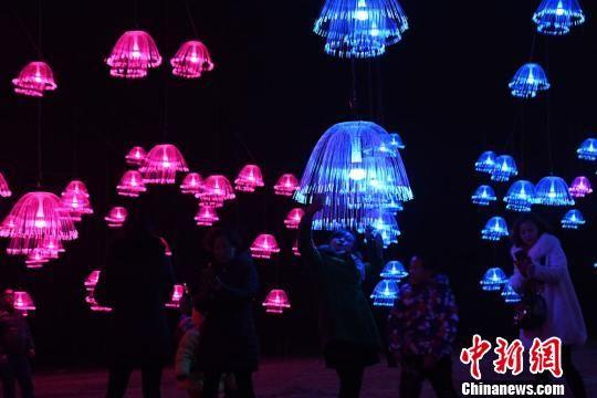 美轮美奂的灯光秀吸引游客争相拍照留念。 杨艳敏 摄