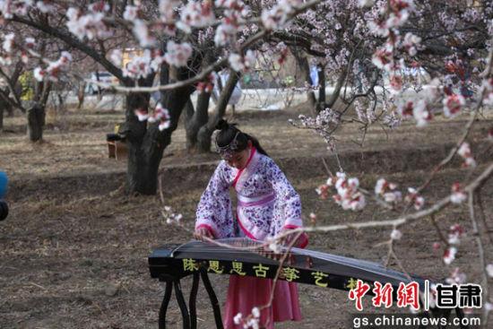 4月1日,敦煌举办李广杏花节,身着汉服的学生进行古琴演奏。