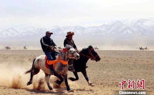 图为广袤的戈壁滩上,骑手和坐骑奋勇向前。 孟根朝力 摄