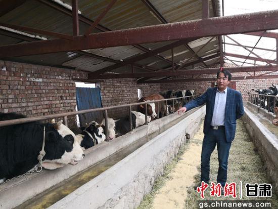 4月下旬,兰州市永登县柳树镇教场村党支部书记李发奇在由自己创办的恒发养殖专业合作社内工作。
