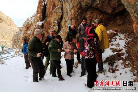 图为世界自然基金会一行在甘肃省盐池湾国家级自然保护区进行野外科研。