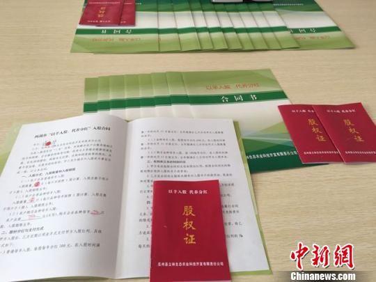 """瓜州县西湖乡养殖户与农产品综合交易市场签订的""""以羊入股、代养分红""""入股合同。 张婧 摄"""