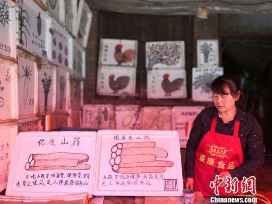 图为胡二玲画的山药,并标明了各自的功效。 杨娜 摄