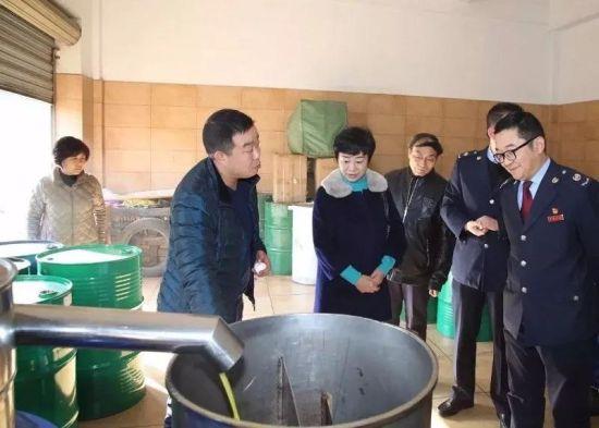 陇南市国税局、武都区国税局领导到田园油橄榄公司了解情况。