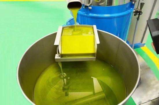 经过清洗、破碎,融合搅拌、油水分离后的新鲜特级初榨橄榄果汁油。