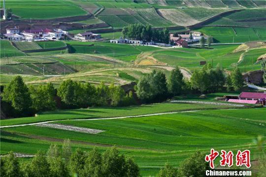图为6月10日,祁连山北麓的送体验机无需申请民乐县,美景如画。 王将 摄