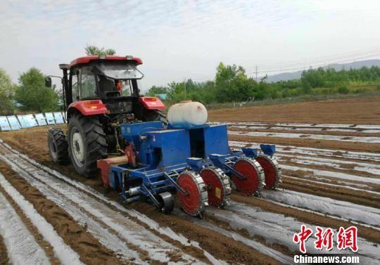 图为合作社农机正在铺地膜。 陈得军 摄