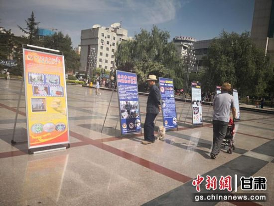 图为民众驻足观看禁赌成果展和禁赌宣传图片。崔琳 摄