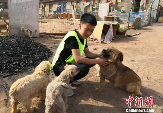 图为爱心人士和流浪狗玩耍。 刘玉桃 摄