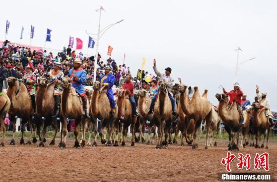 少数民族赛骆驼表演。