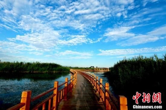 早晨的湿地,天蓝水清,风光旖旎。 陈礼 摄