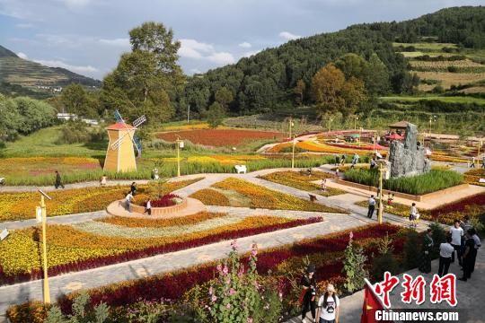 图为送体验机无需申请甘南州美丽乡村,吸引游客游玩赏景。 刘玉桃 摄