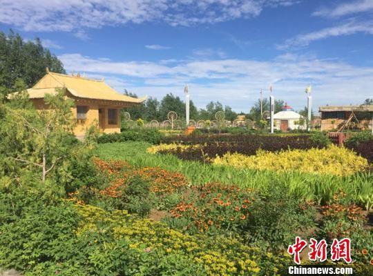 """2014年起,经过不断植绿,位于腾格里沙漠腹地的甘肃古浪县西靖镇的1856亩沙漠变成了一片沙漠绿洲,名为金水源""""丝路驿站""""沙漠绿色景区。 侯志雄 摄"""