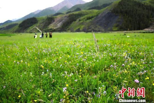 图为治理修复后的九个泉生态治理区,已成为景观,吸引游客驻足留影。 周飞 摄