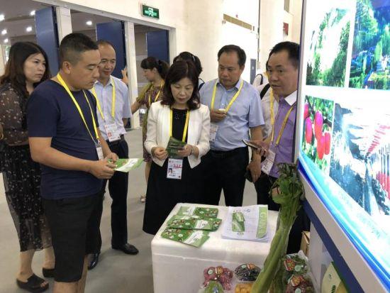 图为甘肃省商务厅副厅长王颖玲视察甘肃馆。
