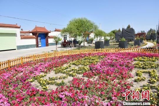 图为腰站子镇草湖沟村二组居民点,栽植的鲜花花开正艳。 魏金龙 摄