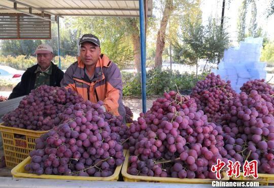 图为果农排队交货。 刘玉桃 摄