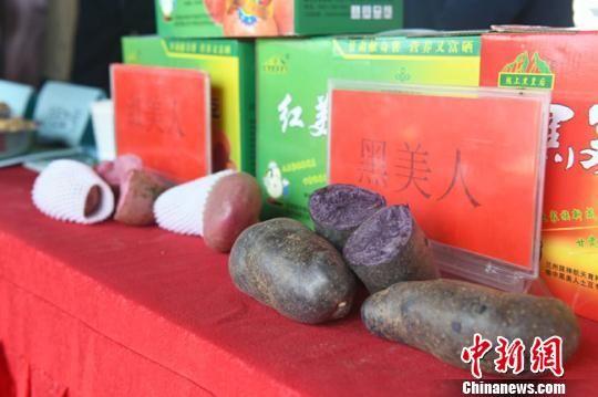 图为开幕式上展示特色农产品。 赵江梅 摄