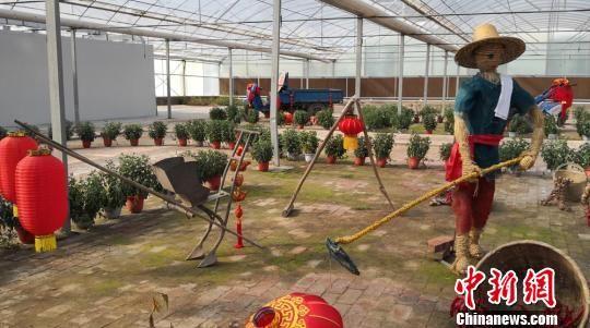 图为传统农具展示。 杜萍 摄