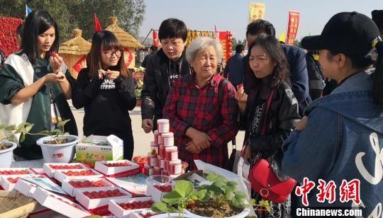 图为游客品尝了解特色农产品。 杜萍 摄