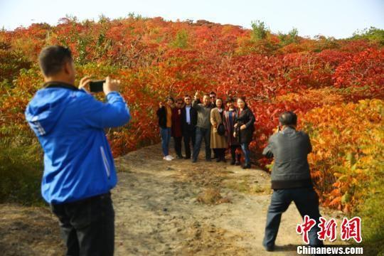 图为游客拍照观赏。 陈兴明 摄