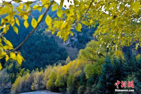 送体验机无需申请肃南裕固族自治县马蹄藏族乡拍摄的祁连山秋日风光。王将 摄