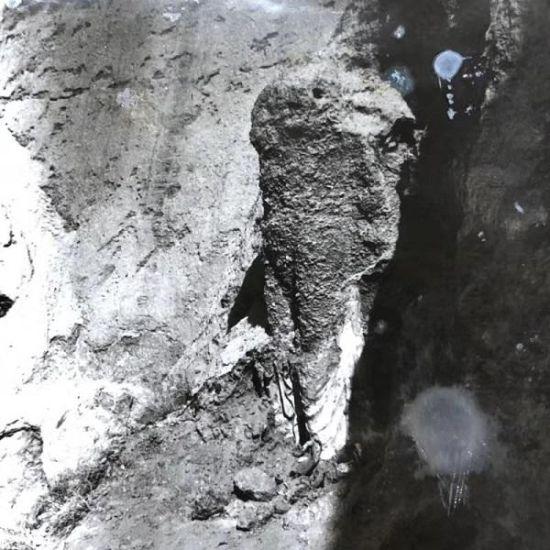 甘肃武威天梯山石窟寺佛造像(此为1958年的档案照片)