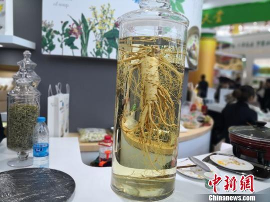 图为中国(甘肃)中医药产业博览会上展出的中药材。 李亚龙 摄