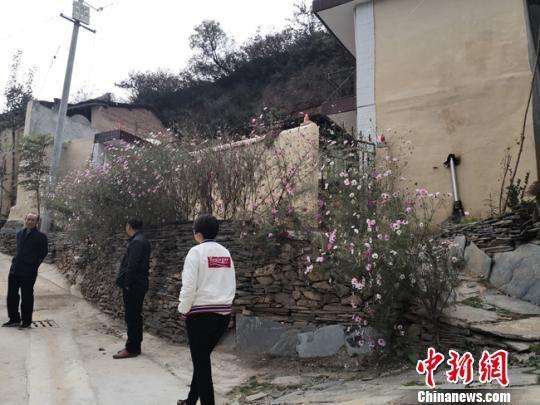 图为村民家门前栽种的花草。 杨娜 摄