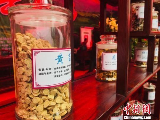 """古怪猴子规律陇南承袭中药文化 冀提高""""天然药库""""附加值"""