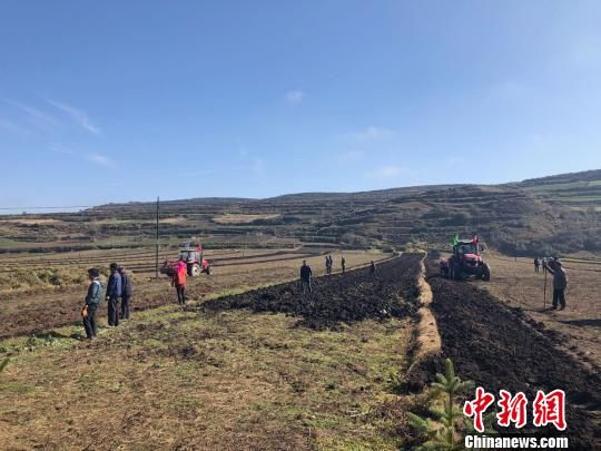 图为在甘肃渭源县会川镇标准化种植的药材地里,驶过的农用机车快速地将黄芪从土里翻出。 徐雪 摄