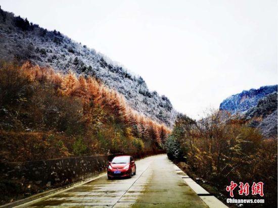不少游客或乘私家车,或乘坐大巴车来官鹅沟赏景。 刘辉 摄