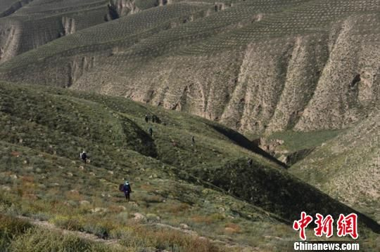 图为大山里的造林人。(资料图) 赵江梅 摄