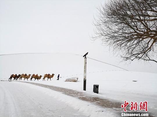 """图为金黄色的鸣沙山被白雪覆盖如""""雪山"""" 冯志军 摄"""