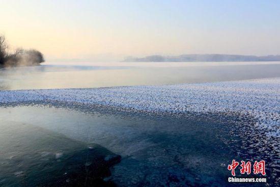 图为湖面上寒气蒸腾,冰花漂浮在水面。陈礼 摄
