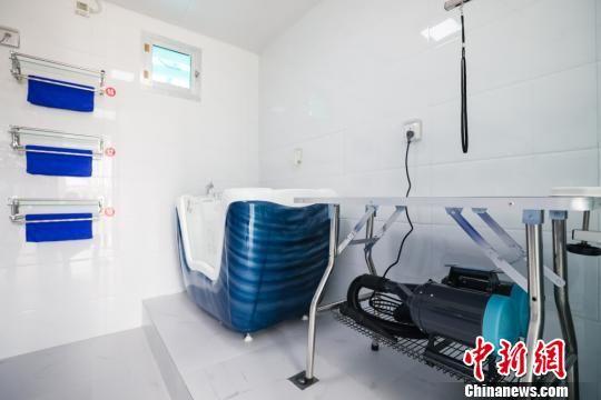 图为给搜救犬洗澡按摩的犬浴室。 刘瑞瑞 摄