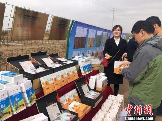 图为甘肃本土企业以藜麦为原材料生产的食品。(资料图) 徐雪 摄