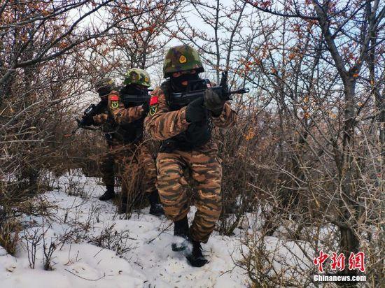 图为武警官兵在密林丛中锤炼战术协同配合。张颖 摄