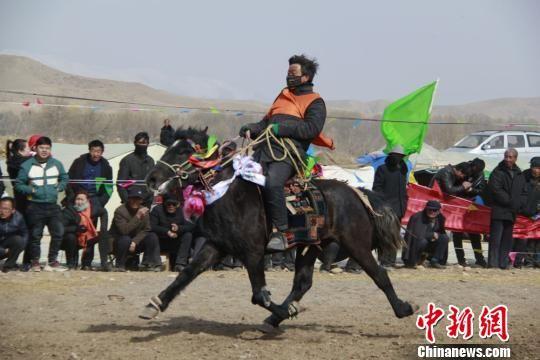 图为来自青海、四川、内蒙、西藏、云南等地的参赛选手驰骋赛场,尽现赛马健儿风采。 张学森 摄